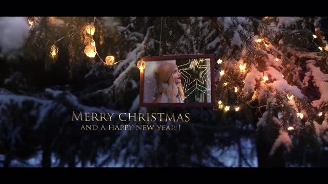 Photo of Winter Forest Christmas Intro – MotionArray 889613