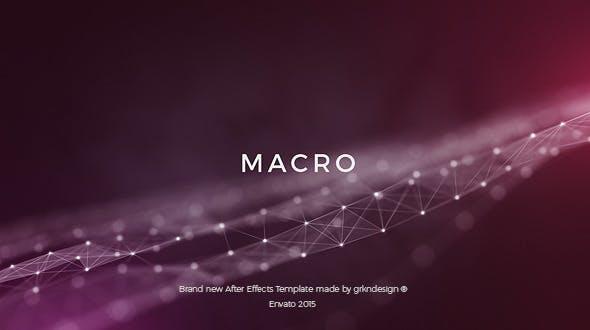 Photo of Macro – Videohive 12735004