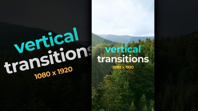 Photo of Vertical Transitions – MotionArray 999115